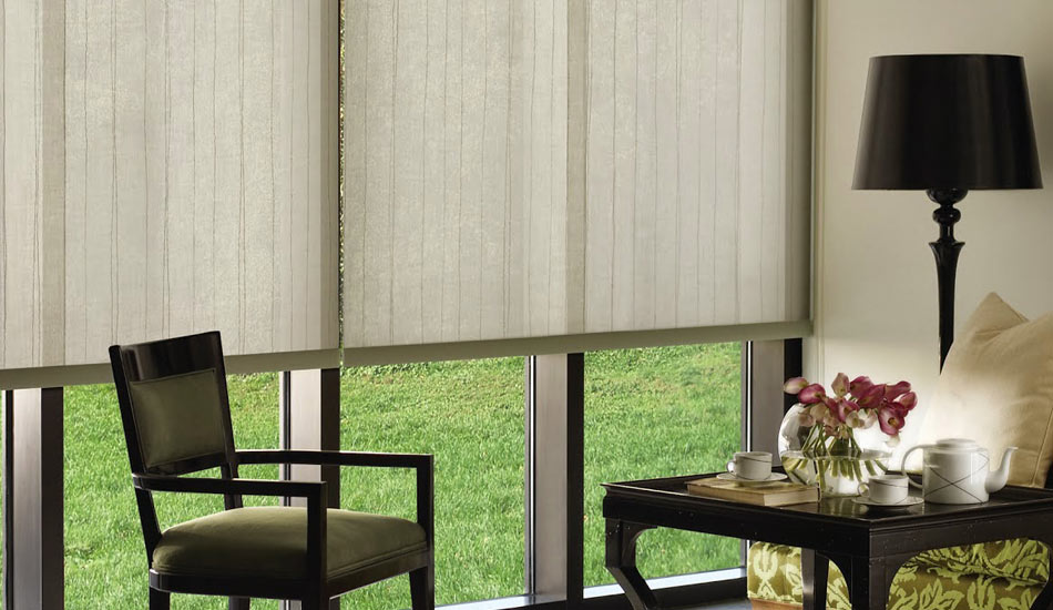 Living Room with Hunter Douglas Designer Roller Shades