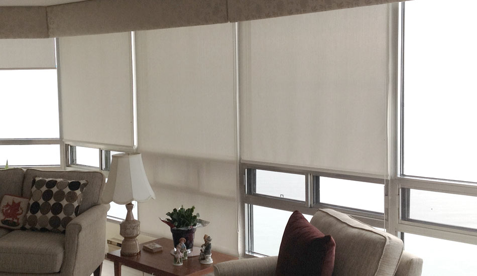 Semi-Opaque Roller shades with Custom Valances
