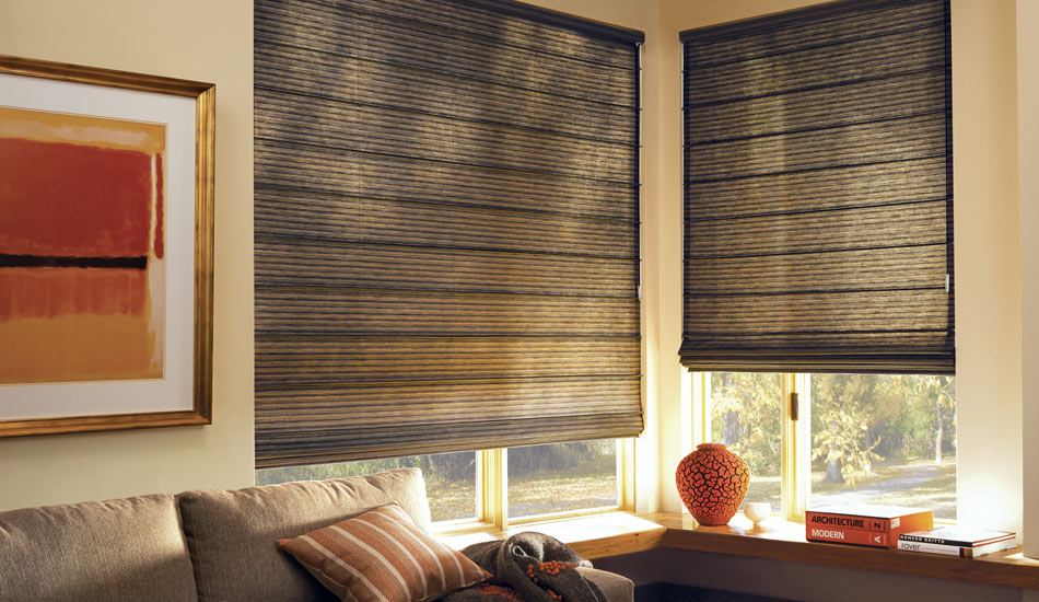 Living Room with beautiful Roman Shades by Hunter Douglas